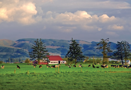 Photo of Tillamook  community